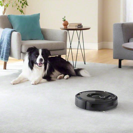 cane interagisce con robot aspirapolvere